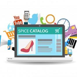 Case Study: Catalog Management in Fashion Retail