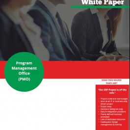 White Paper: Program Management Office (PMO)